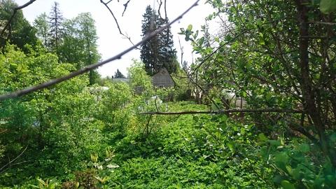 Продается участок, деревня Кривцово - Фото 4