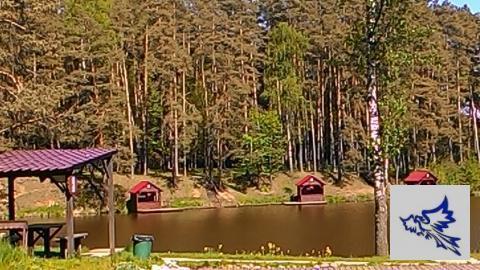 Таунхаус 270 м2 с гаражом. Лесной участок. ИЖС. Новая Рига, 10 км - Фото 5