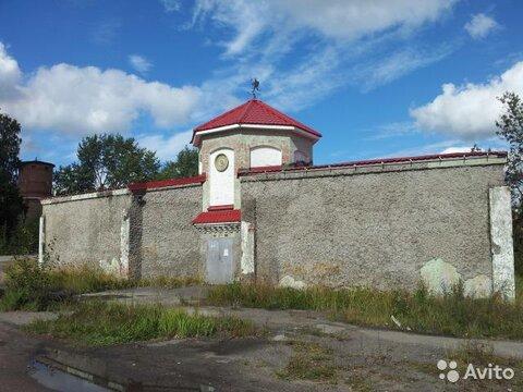 Ло Каменногорск помещение свободного назначения 450 кв м - Фото 1