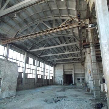 Аренда производства 1500 кв м в Струнино - Фото 1