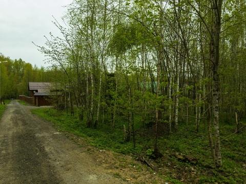 Земельный участок в лесу, 10 соток, Киевское ш, 55 км, Лесная радуга - Фото 3