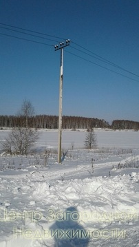 Участок, Щелковское ш, 110 км от МКАД, Бельцы д. Участок 16 соток для . - Фото 4