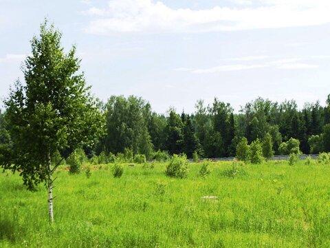 Участок 8 соток с домом 250 м2 от МКАД 25 км кп Романтика - Фото 4