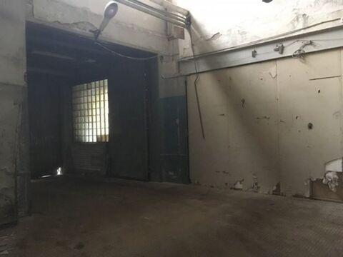 Сдам производственное помещение 527 кв.м, м. Черная речка - Фото 5