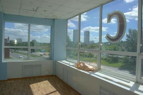 Офис, 195м2, Крестинского, 46а - Фото 3