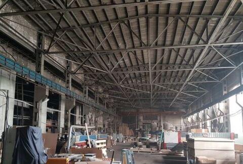 Сдам производственно-складской корпус 8600 кв. м. - Фото 1