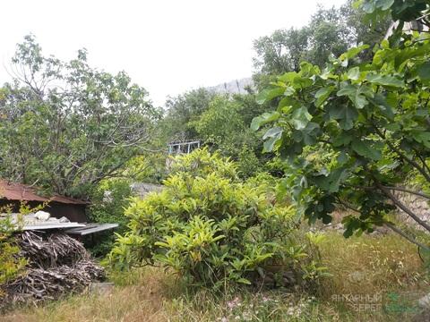 Продается участок 6 соток с домом в п. Олива, Большая Ялта - Фото 2