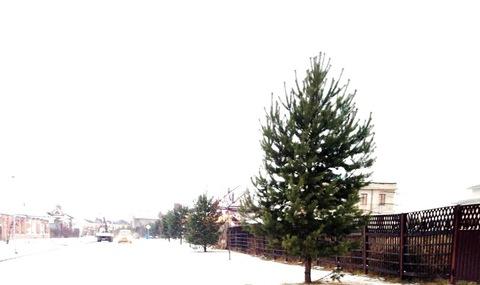 Продается участок. , Зименки д, коттеджный поселок Антоновка - Фото 2