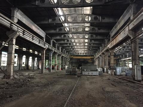 Производственные помещения 1000 кв.м. - Фото 4