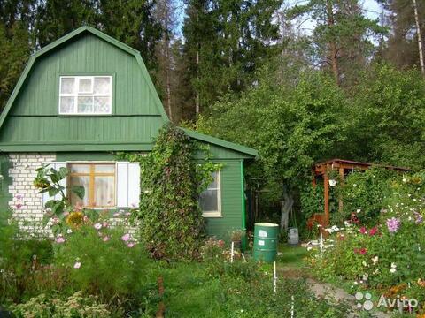 Кирпичный дом 60м на участке 11 сот Александров - Фото 2