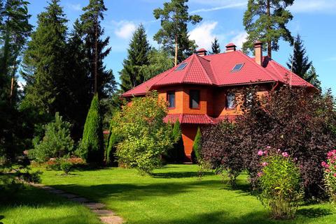 Загородный особняк в окружении многовекового леса - Фото 3