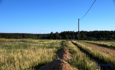 Земельный участок 188 соток в д. Черелисино. 12 000 за сотку. - Фото 2