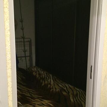 1- ком. квартира Войкова д 5 - Фото 4