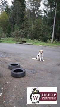 Дача в пгт. Лесогорский - Фото 3
