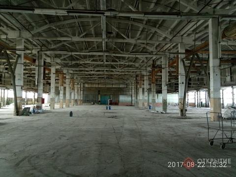 Под производство/склад (5000кв.м) - Фото 1