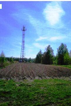 Участок 27 соток в д.Шакино, Клепиковского района. - Фото 4