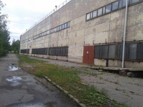 Продам производственное помещение 6565 кв.м, м. Волковская - Фото 1