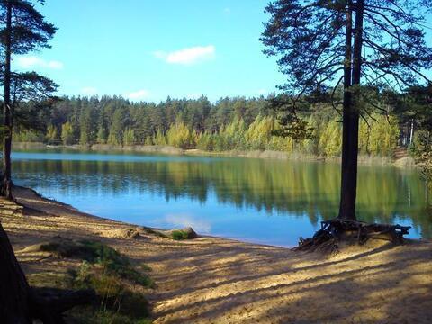 Раздолье - Бережок - озеро Былинное - Фото 2