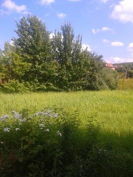 Земельный участок 6 сот д. Авдотьино, ул. Дачная - Фото 3