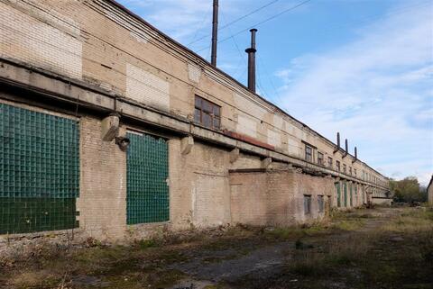 Производственно-складское здание 12 700 кв.м. - Фото 4