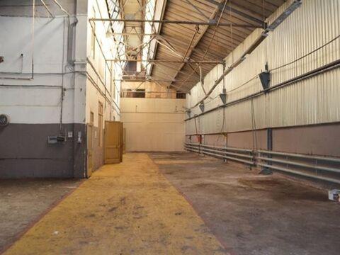 Сдам производственное помещение 905 кв.м, м. Балтийская - Фото 5