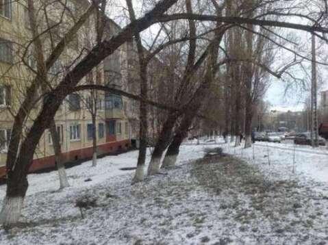 Продажа офиса, Белгород, Ул. Щорса - Фото 1