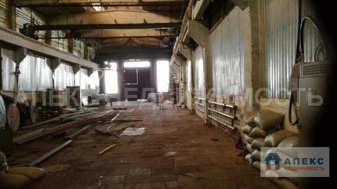 Аренда помещения пл. 770 м2 под производство, склад, , Пушкино . - Фото 4