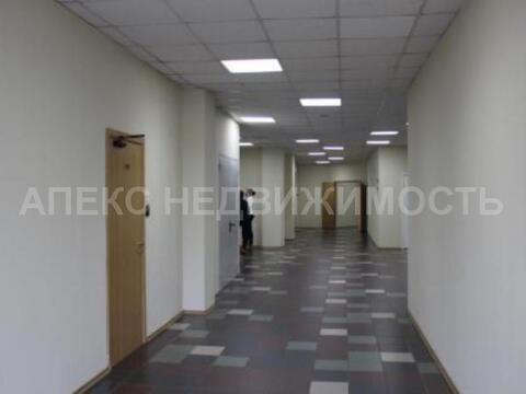 Аренда офиса 89 м2 м. Семеновская в бизнес-центре класса С в Соколиная . - Фото 5