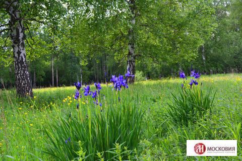 Участок 12,63 с прекрасным видом на лес,21км от МКАД, Калужское\Киевск - Фото 1