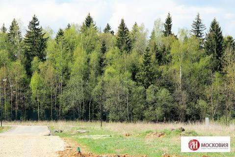 Участок у леса 10 соток, ИЖС, 38 км по Киевскому шоссе - Фото 4