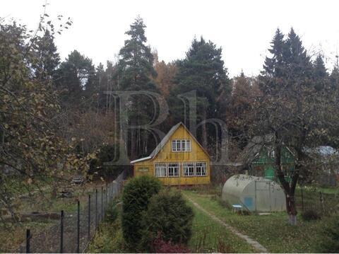 продам полностью обустроенный и обжитой дачный домик с кусочком леса на берегу ре...