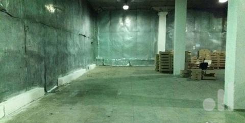 Аренда Морозильного склада - Фото 2