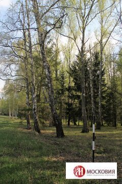 Лесной участок 15 соток в клубном поселке, 27 км по Калужскому ш. - Фото 2
