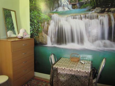 Продаю комнату 20 кв.м. в центре ул. Серафимовича - Фото 3