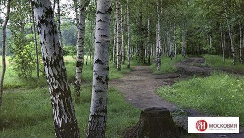 Земельный участок 12.13 сотки, ПМЖ, Новая Моква, 20 км. Калужское ш. - Фото 3