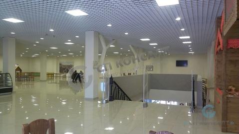 Аренда торгового помещения 1500 кв.м. - Фото 1