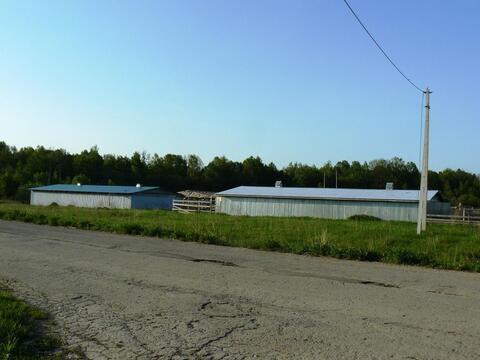 Ушаковка деревня участок 18,55 гектар Заокский район Тульская область - Фото 5