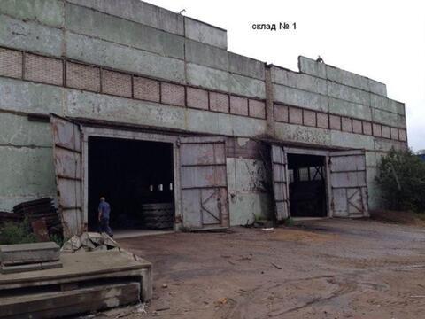 Продам производственное помещение 18000 кв.м, м. Парнас - Фото 1