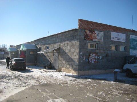 Продажа торгового помещения, Еткуль, Ул. Первомайская, Еткульский . - Фото 4
