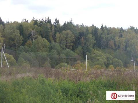 Лесной участок 15 соток, на берегу реки. Москва. 30 км от МКАД. - Фото 4