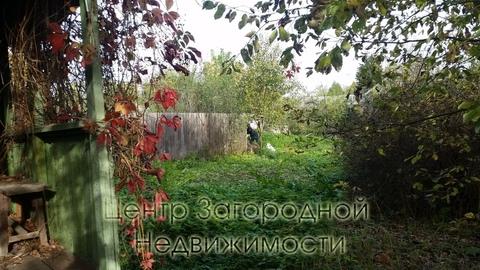 Участок, Киевское ш, Боровское ш, 25 км от МКАД, Апрелевка. Киевское . - Фото 4
