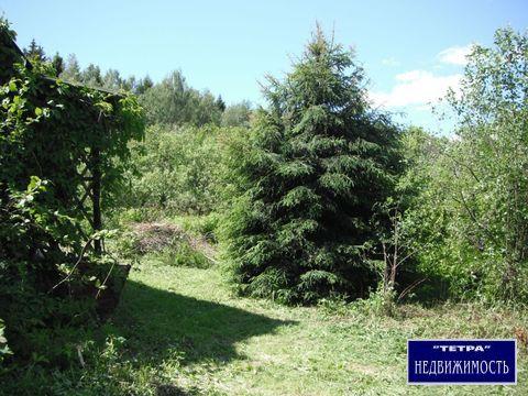 Продается земельный участок 6 соток, г. Москва, п. Кленовское - Фото 4
