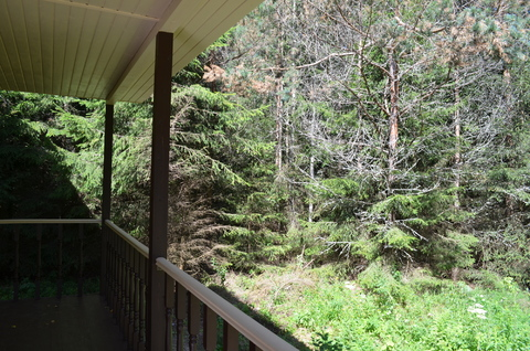 Дом в сосновом лесу вблизи озера Плещеево - Фото 5
