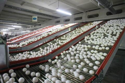 Сельхозпредприятие - Фото 3