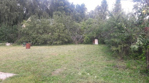 Вблизи деревни: Киселевка и Пыхчево, 7 соток за участком лес - Фото 4