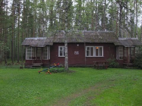 Сдается дом курортном р-не, пос. Комарово на общей тер-рии в 60 сот - Фото 1