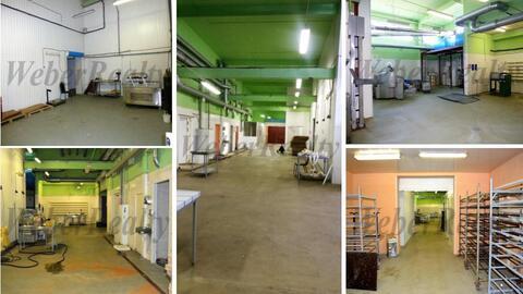Производственно-складской комплекс под пищевое производство - Фото 1