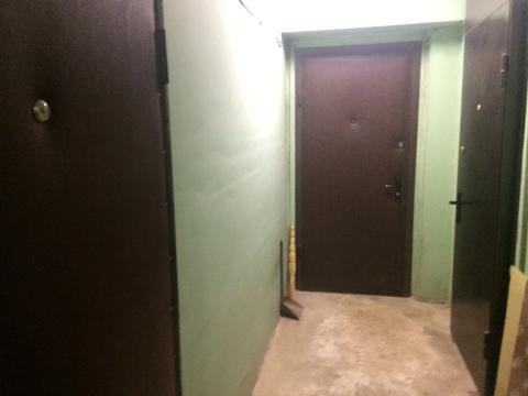 Уютная, солнечная 2-х комнатная квартира с отличным ремонтом. - Фото 3