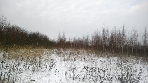 Каширское шоссе 48 км от МКАД с.Вельяминово, Участок 15 соток - Фото 1
