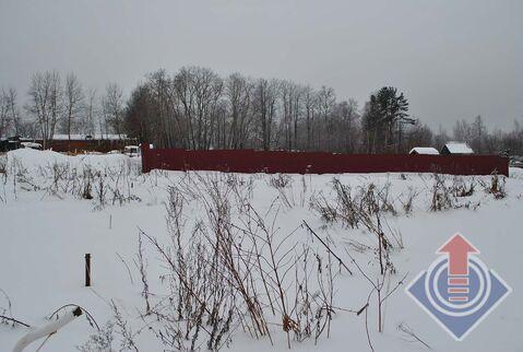 Продажа земельного участка 21 сотка в дер. Пожитково - Фото 4